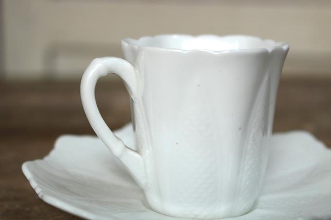パラゴンティーカップ