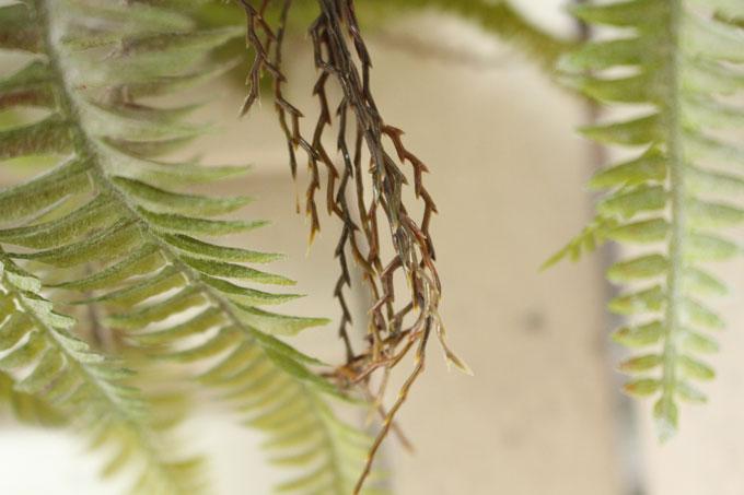 存在感のある大き目のシダ造花