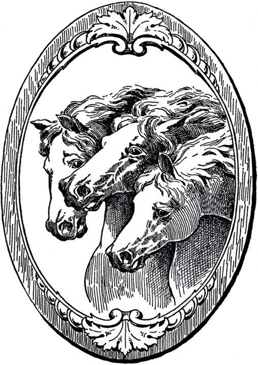 アンティークイラスト「馬」