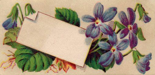 アンティークイラスト「花の絵葉書」