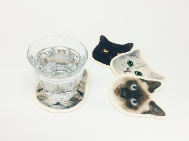 猫のコースター